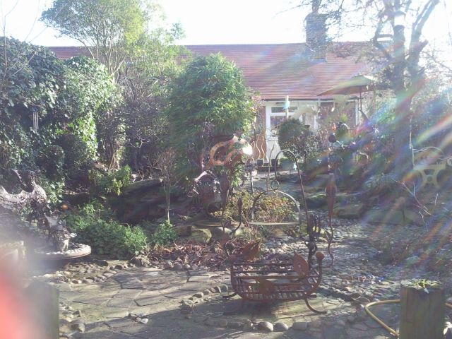 Back garden 18th Feb 2013